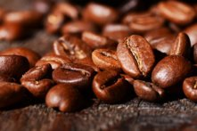 What is Arabica Coffee? Arabica vs. Robusta: 11 Tasty Differences